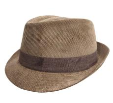 Classic Trilby Velours